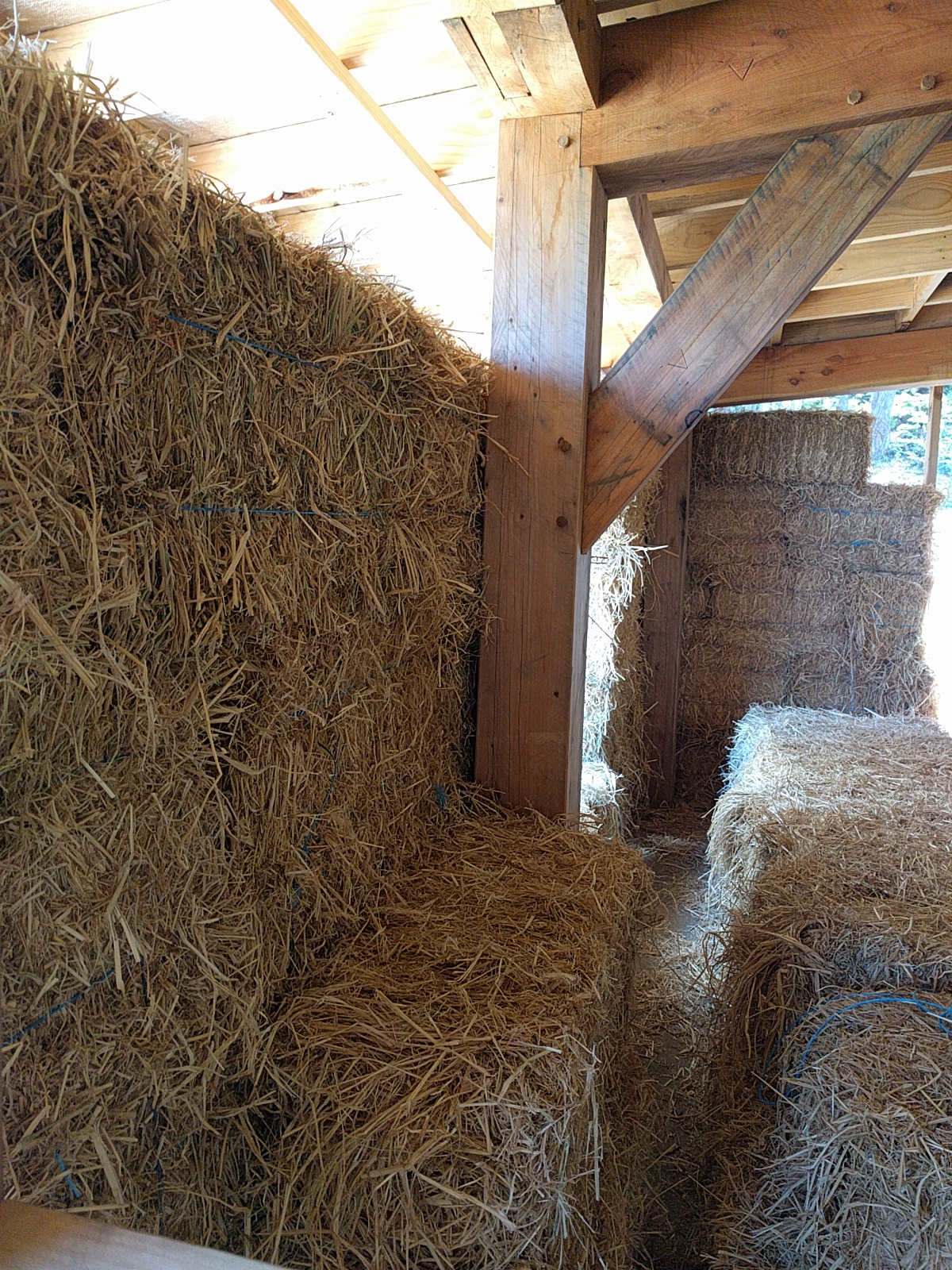 Straw bale workshop – day 1