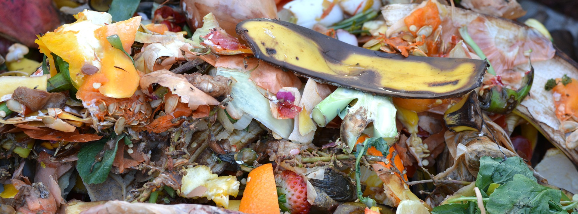 Reducing and composting food waste